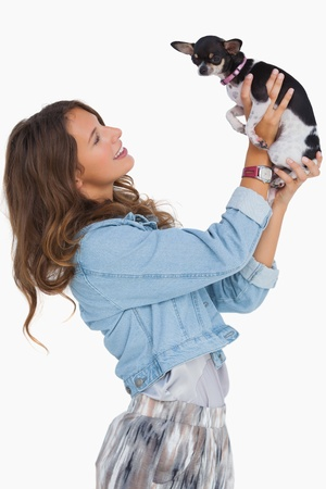 Pretty woman lifting her chihuahua on white background photo