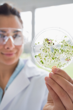 Student holding up petri dish containing seedlings photo