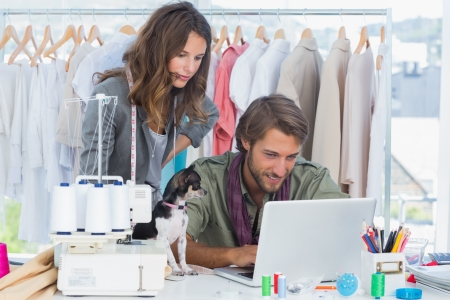 Fashion designers with chihuahua working on laptop photo