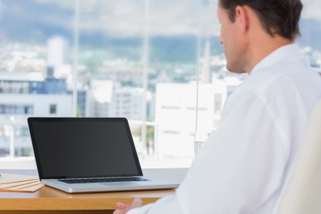 working attire: Businessman looking at a laptop in his office