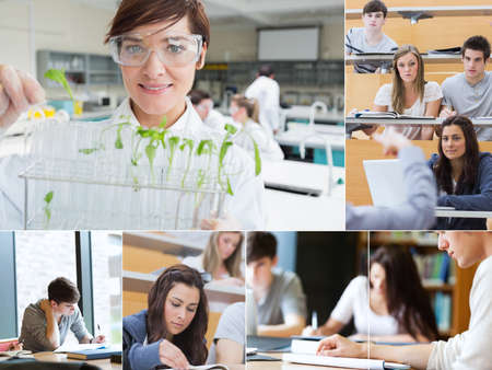 Collage of teacher and students at the university photo
