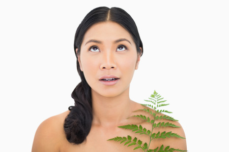 dark haired woman: Pretty dark haired woman with fern looking up on white background Stock Photo