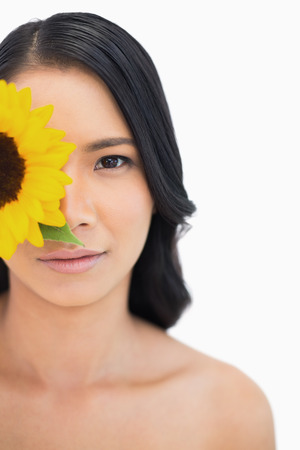 Natural black haired model with sunflower on white background photo