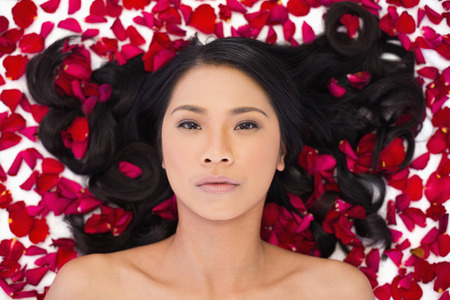 Attractive dark haired model lying in rose petals on white background photo