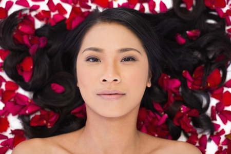 Sensual dark haired model lying in rose petals on white background photo