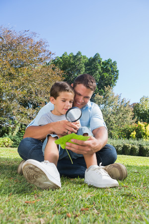 Happy dad and son inspecting leaf with a magnifying glass in the park photo