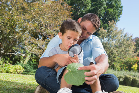 Cheerful dad and son inspecting leaf with a magnifying glass in the park photo