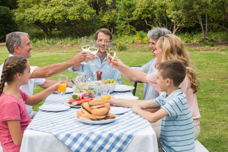 Multi generation family toasting each other at dinner outside at picnic table photo