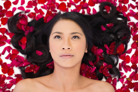 Thoughtful attractive dark haired model lying in rose petals on white background photo