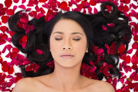 Relaxed attractive dark haired model lying in rose petals on white background photo