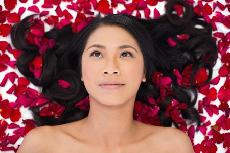 Pensive sensual dark haired model lying in rose petals on white background photo