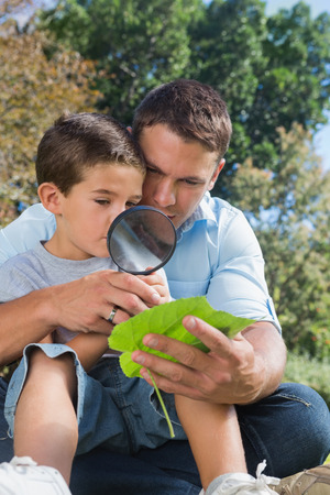 Dad and son inspecting leaf with a magnifying glass in the park photo