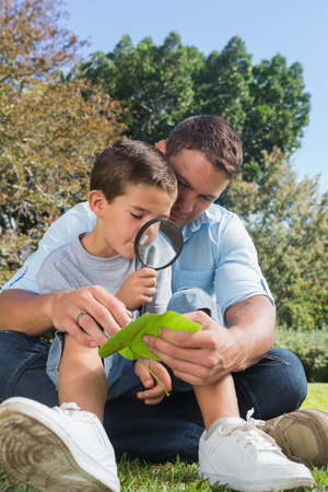 Smiling dad and son inspecting leaf with a magnifying glass in the park photo
