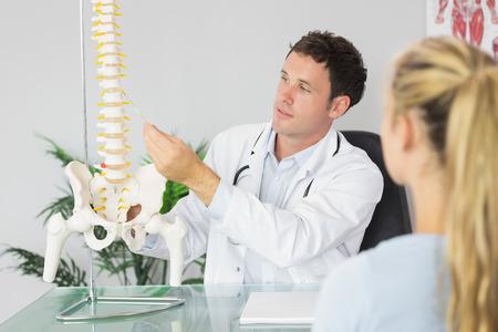 skelett mensch: Inhalt Doktor, der einen Patienten etwas auf Skelettmodell in hellen B�ro