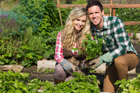 Smiling young couple crouchng in their garden holding a plant smiling at camera photo