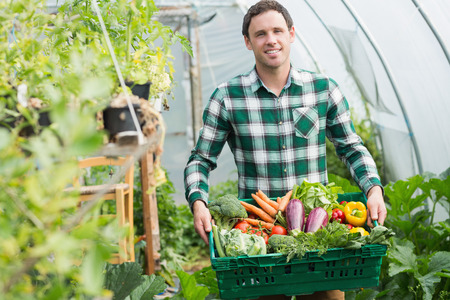 Proud man presenting vegetables in a basket standing greenhouse photo
