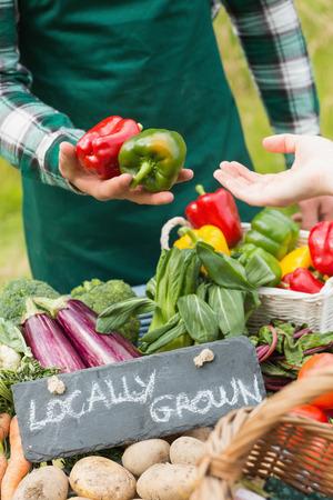 granjero: Farmer vendiendo pimientos orgánicos en un mercado de agricultores