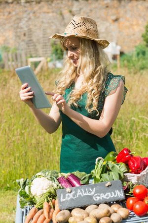 Young female farmer checking her tablet at her stall in the farmers market photo