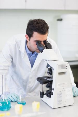 Male scientific researcher using microscope in the laboratory photo