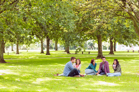 male friends: Group of young college students sitting on grass in the park