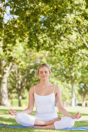 Calm woman sitting meditating on an exercise mat in a park photo