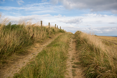 clear path: Cloudy countryside background