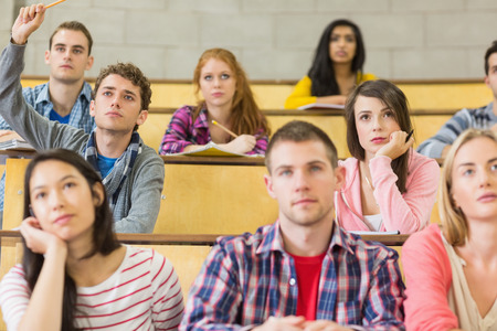 concentrating: Concentrating students sitting at the college lecture hall Stock Photo