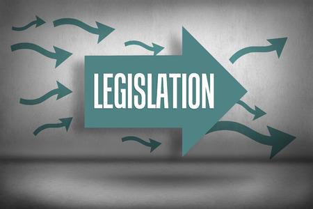 legislation: The word legislation against arrows pointing