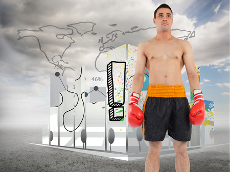 Boxer standing against global statistic on sky background photo