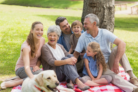 Portrait of an extended family with their pet dog sitting at the park photo