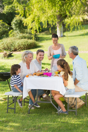 dining set: Side view of extended family dining at outdoor table Stock Photo