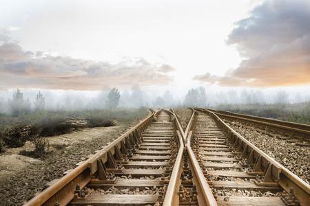 forest railway: Railway tracks leading to misty forest