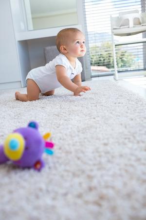 bebe gateando: Vista lateral de un bebé lindo que se arrastra en la alfombra en su casa Foto de archivo