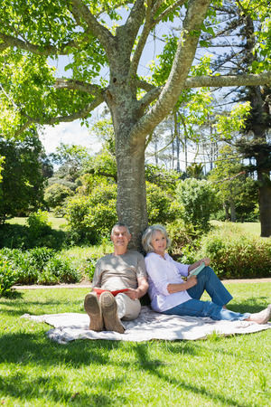 Portrait of a smiling mature couple sitting against a tree at the park photo