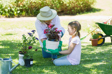 View of a grandmother and granddaughter engaged in gardening photo