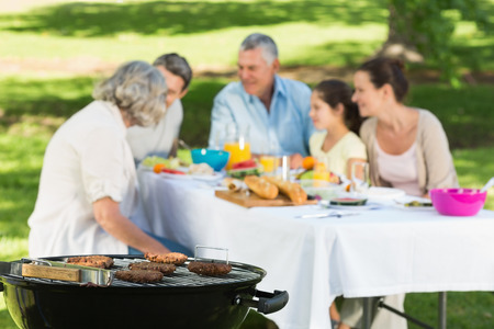 Close-up of barbecue grill with extended family having lunch in the park photo