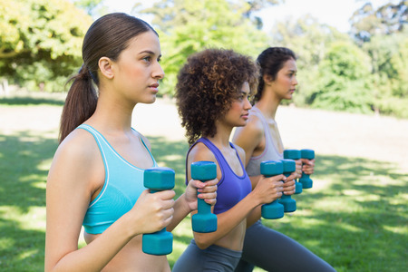 Side view of sporty female friends lifting dumbbells in park photo