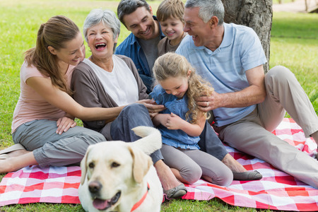 Cheerful extended family with pet dog sitting on picnic blanket at the park
