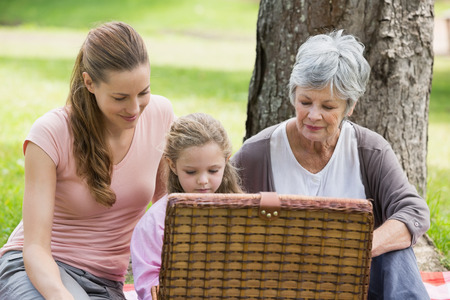 Grandmother mother and daughter with picnic basket sitting at the park photo