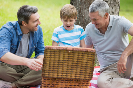 Grandfather father and son with picnic basket sitting at the park photo
