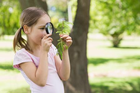 schoolkid search: Chica joven que examina las hojas con una lupa en el parque
