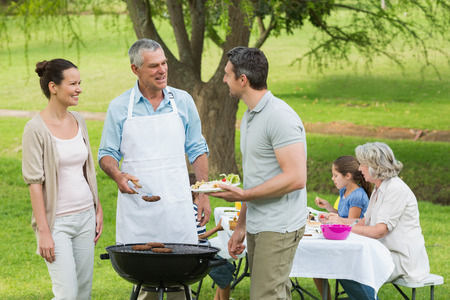 gardens: View of an extended family with barbecue in the park
