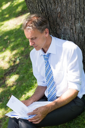 reviewing documents: Mature businessman reviewing documents while leaning on tree trunk in park