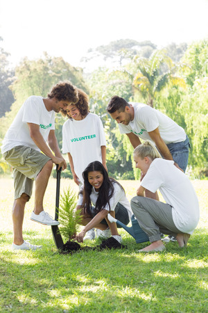 selfless: Group of smiling volunteers planting in park Stock Photo