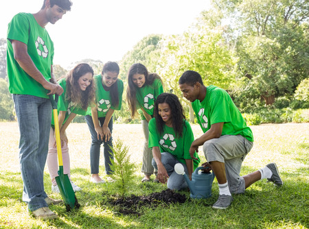 environmentalists: Group of environmentalists looking at plant in park