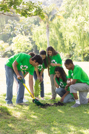 Group of multiethnic environmentalists gardening in park Stock Photo