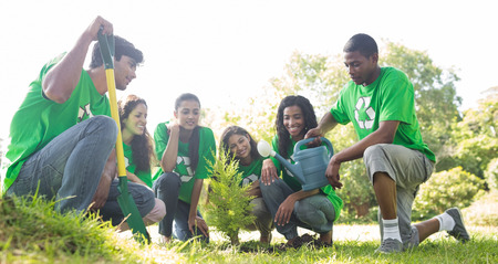 environmentalists: Group of environmentalists planting together in park