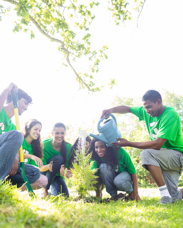 Group of environmentalists watering plant in park  Stock Photo