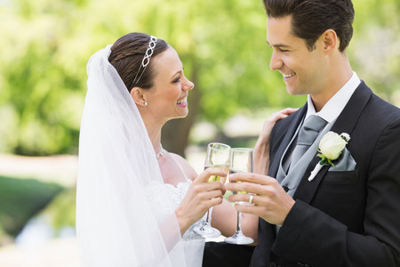Romantic newlywed couple toasting champagne in park photo