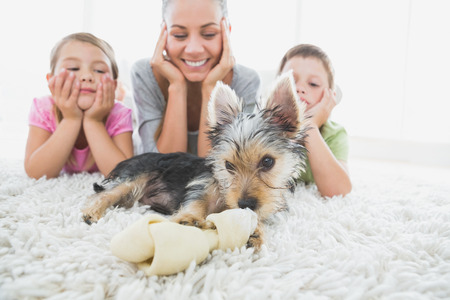 Siblings lying on rug looking at their yorkshire terrier with mother at home in the living room photo